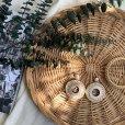 画像3: rattan circle pir (3)